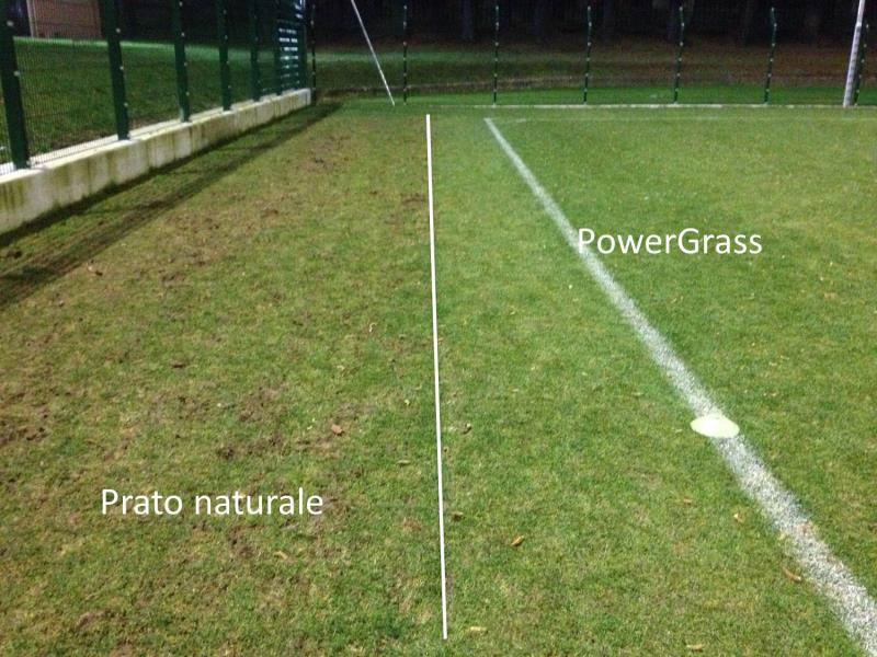 Instead PowerGrass hybrid grass will provide better growth conditions and resist more compared to natural grass